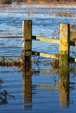 Flooded land near Ely Royalty Free Stock Images