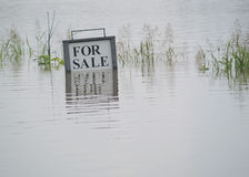 Flooded Land For Sale. This land for sale, has now become a literal lake or ocean after major flooding from rainfall and river overflow. For the right price you Royalty Free Stock Photos