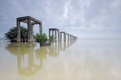 Flooded landscape Royalty Free Stock Photography