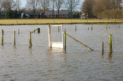 Flooded meadow Stock Photo