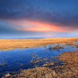 Flooded meadow at the evening Royalty Free Stock Photos