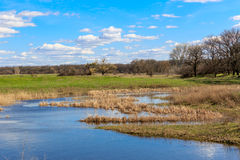 Flooded meadow under nice blue sky Royalty Free Stock Photography
