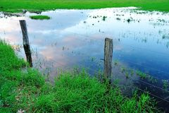 Flooded paddock Stock Photography