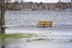 Flooded park bench Royalty Free Stock Photos