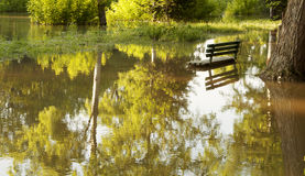 Flooded park Royalty Free Stock Photo