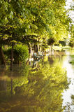 Flooded park Royalty Free Stock Photography