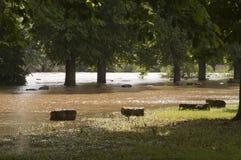 Flooded park Stock Photo