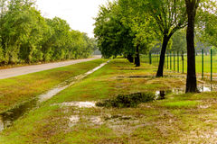 Flooded park with standing water Royalty Free Stock Image