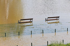 Flooded park Stock Image
