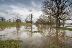 Park area flooded in the UK during winter. Flooded park in the UK with trees partially submerged under water and nice reflections with stormy skies in background Royalty Free Stock Photo
