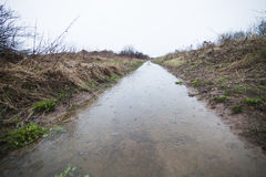 Flooded Path (ditch) Stock Photography