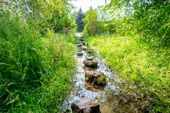 Flooded path in the summer. The concept of daily obstacles. Overcoming a difficult path to achieve the intended goal. Difficulties on the way to success Royalty Free Stock Images
