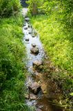 Flooded path in the summer. The concept of daily obstacles. Overcoming a difficult path to achieve the intended goal. Difficulties on the way to success Royalty Free Stock Photography