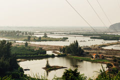 Flooded rice fields, wires and buildings, palm trees stock image