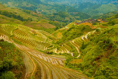 Flooded Rice Terrace Valley Traditional Village Stock Photo