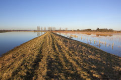 Flooded river bank Stock Photography