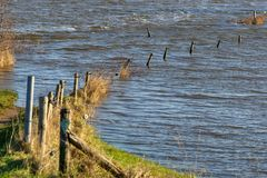 Flooded river bank in The Netherlands Stock Photo