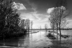 Flooded river Royalty Free Stock Image
