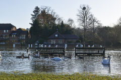 Flooded River. View of bench under flood from Thames river stock photo