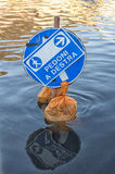 Flooded road sign Royalty Free Stock Image