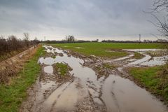 Flooded and deeply rutted field Royalty Free Stock Image