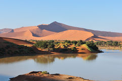 A flooded Sossusvlei in the Namib Desert  Royalty Free Stock Photos
