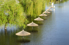 Flooded town. Town flooded by river with trees and sunshades in water royalty free stock images