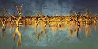 Flooded Trees with Grunge Effects. Flooded dead trees in a lake at sunset, with grunge effects.  Menindee, New South Wales, Australia Stock Photo