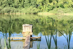Floodgate of pond Royalty Free Stock Image