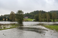 Flooding реки Стоковые Изображения
