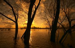 Flooding. A couple of weeks per year the Rhine River is flooding royalty free stock photography