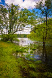 Flooding along the shore of Loch Raven Reservoir in Baltimore, M Stock Images