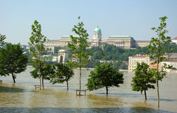 Flooding Danube Royalty Free Stock Image