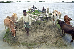 Flooding in the delta Bangladesh, climate change. Bangladesh, village on the island of Charkajal, Bay, Gulf of Bengal: No country in the world is so vulnerable Royalty Free Stock Photography