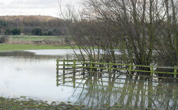 Flooding on farmland Stock Photo