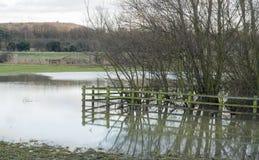 Essex countryside uk flooded farmland. Flooding on farmland rural essex uk Stock Photo