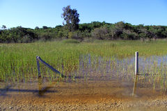Flooding. And fence near road in Turkey stock photo