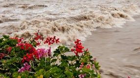Flooding in flood after rain. Flooding in flood after heavy rain Stock Photography
