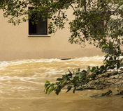 Flooding Stock Images