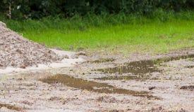 Flooding landscape Royalty Free Stock Photography