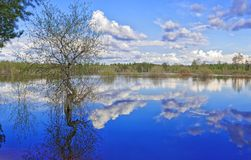 Flooding on a large Siberian lake Royalty Free Stock Photography