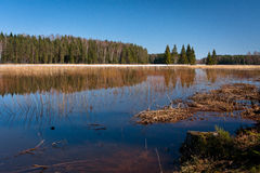 Flooding in latvia Royalty Free Stock Photography