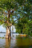 Flooding near the Chao Phraya River in Bangkok Royalty Free Stock Photo