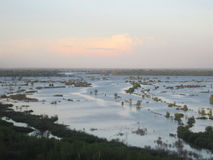 Flooding. Ob river, Altai, landscape Stock Image