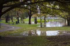Flooding of parkland during autumn Stock Images