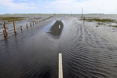 Flooding on a road. Floods have flooded a street. Flooding on a road Royalty Free Stock Photos