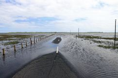 Flooding on a road. Floods have flooded a street. Flooding on a road Royalty Free Stock Photo