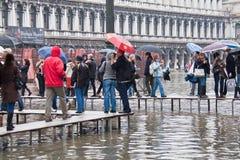 Flooding St Marks Square. Venice Italy, 16 Nov 2011: Tourists walking along raised walkways during Acqua Alta flooding at St Marks Square, Venice Italy Stock Images