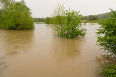 Flooding in Tennessee Royalty Free Stock Photo