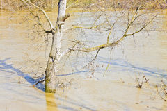 Flooding after torrential rain in a sunny day - concept image.  Stock Photos